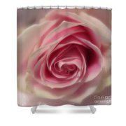 Pink Rose Macro Abstract Shower Curtain
