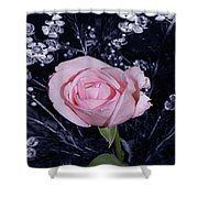 Pink Rose Of Imperfection Shower Curtain