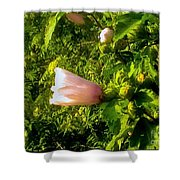 Pink Rose Of Sharon Against Trees Shower Curtain
