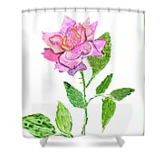 Pink Rose, Painting Shower Curtain