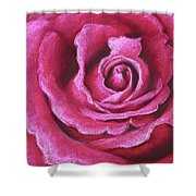 Pink Rose Pastel Painting Shower Curtain