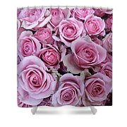 Pink Roses Shower Curtain