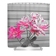 Pink Rose Tree Pop Shower Curtain