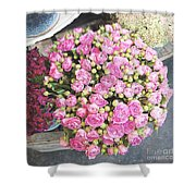 Pink Roses Photograph Shower Curtain