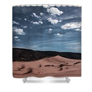 Pink Sand Dunes Np Shower Curtain