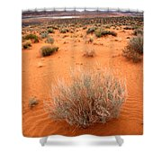 Pink Sand Of Lake Powell Shower Curtain