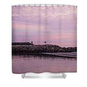 Pink Skies At Dawn Shower Curtain
