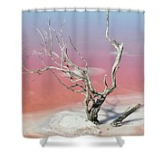 Pink Solitude Shower Curtain