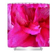 Pink Splash Shower Curtain by Kristin Elmquist