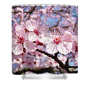 Pink Spring Blossoms Art Print Blue Sky Landscape Baslee Troutman Shower Curtain