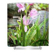 Pink Spring Bulb Shower Curtain