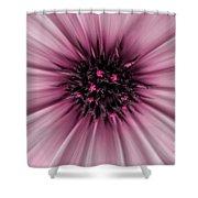 Pink Sun. Shower Curtain