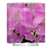 Pink Sweetpeas Shower Curtain