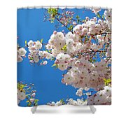 Pink Tree Blossoms Art Prints 55 Spring Flowers Blue Sky Landscape  Shower Curtain