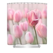 Pink Tulip Cloud Shower Curtain