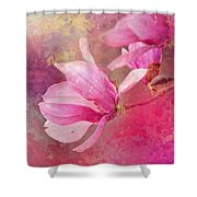 Pink Tulip Magnolia In Spring Shower Curtain