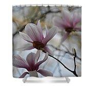 Pink Tulip Magnolias Shower Curtain