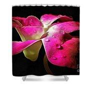 Pink Velvet Shower Curtain