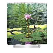 Pink Water Lily Pad Shower Curtain