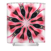 Pink White Petals Shower Curtain