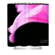 Pink Whisper Shower Curtain