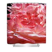 Pink White Roses Floral Art Prints Rose Baslee Troutman Shower Curtain