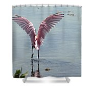 Pink Wings Shower Curtain