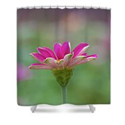 Pink Zin Shower Curtain