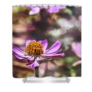 Pink Zinnia Bokeh Shower Curtain