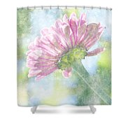 Pink Zinnia On Bokeh Background Shower Curtain