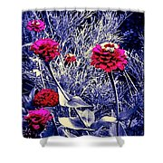 Pink Zinnia's Against A Silver Background Shower Curtain