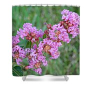 Pinkish Red Flower Bloom Close Up Shower Curtain