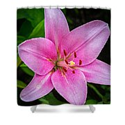 Pinkly Yours Shower Curtain