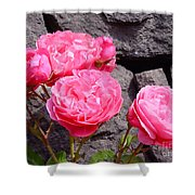 Pinks On The Rocks Shower Curtain