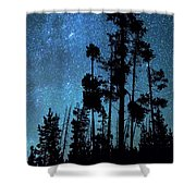 Pinnacle Of The Forest  Shower Curtain