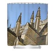 Pinnacles Shower Curtain