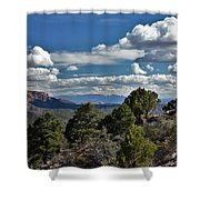 Pinon Forest At The Top Of Kolob Canyon Shower Curtain