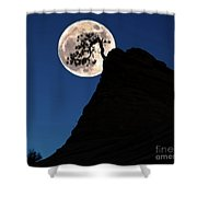 Pinon Pine And Moon Zion National Park  Shower Curtain
