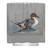 Pintail Shower Curtain by Jean Ann Curry Hess