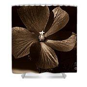 Pinwheel Shower Curtain