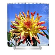 Pinwheel Dahlia Shower Curtain