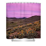 Pioneer Mountain Spring Shower Curtain