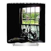 Pioneer Window Shower Curtain