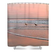 Pipers In Pink Shower Curtain