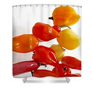 Piquant Play 2 Shower Curtain