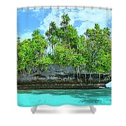 Pirate Ship Cay Shower Curtain