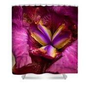 Pistil Packing Iris Shower Curtain