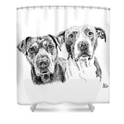 @pitbull.jack.and.miele Shower Curtain