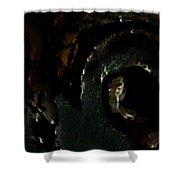 Piteye Shower Curtain
