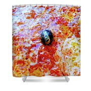Pizza Pie With Olive Shower Curtain